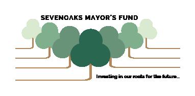 Mayor's Charity Challenge – 29th February